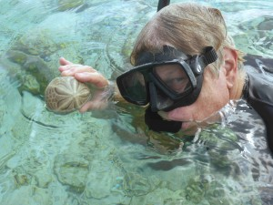 Mike finds a sea urchin
