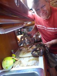 Fresh Crabs for Lunch!